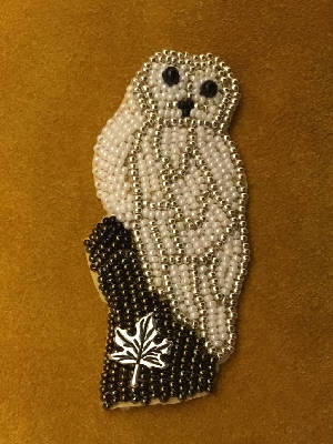 Snow owl/ Arphan des neiges