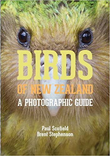 Birds of NZ - A Photographic Guide