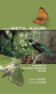 From Weta to Kauri - A guide to the New Zealand Forest