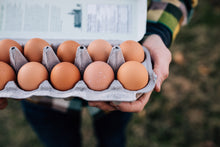 Load image into Gallery viewer, Organic Free Range Eggs - Large - 3 Dozen
