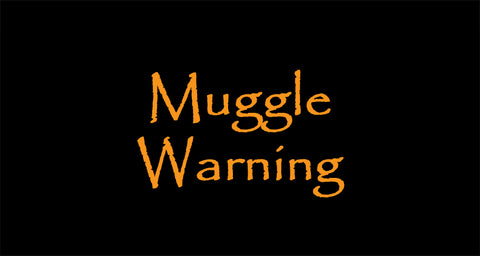 muggle warning, magic wands, wand wooden wand