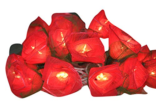 Red Roses Flower String Lights Floral,Patio,Fairy,Decor,Boy Girl Bedroom,Wedding, Lights