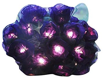 Purple Roses Flower String Lights Floral,Patio,Fairy,Decor,Boy Girl Bedroom,Wedding, Lights