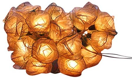 Off White Roses Flower String Lights Floral,Patio,Fairy,Decor,Boy Girl Bedroom,Wedding, Lights