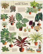 Load image into Gallery viewer, Cavallini & Co House Plants 1000 Piece Puzzle