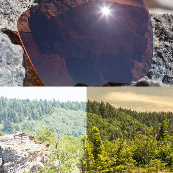 polarized bronze brown lenses reflecting the sun and showing a comparison of the tint looking through the lens versus the standard view without the lens