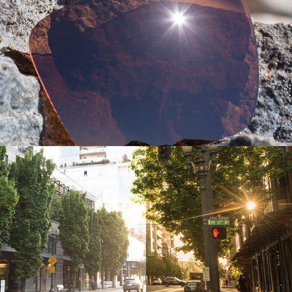 elite polarized dark brown lenses reflecting the sun and showing a comparison of the tint looking through the lens versus the standard view without the lens