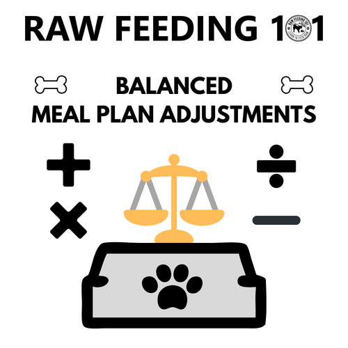 Balanced Meal Plan Adjustments