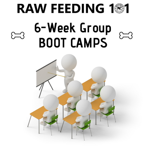 Raw Feeding 101 - Group Boot Camp