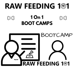 raw feeding boot camp