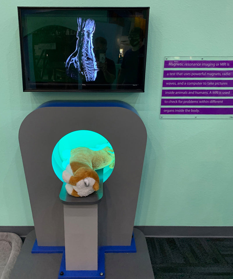 MRI Machine With RFID Tags In Each Stuffed Animal That Triggers AnX-RAY