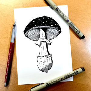 "Amanita Pettit Mushroom - PNW Fungi Inspired Original Ink Illustration, 5""x7"""