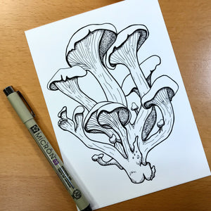 "Oyster Mushroom - PNW Fungi Inspired Original Ink Illustration, 5""x7"""