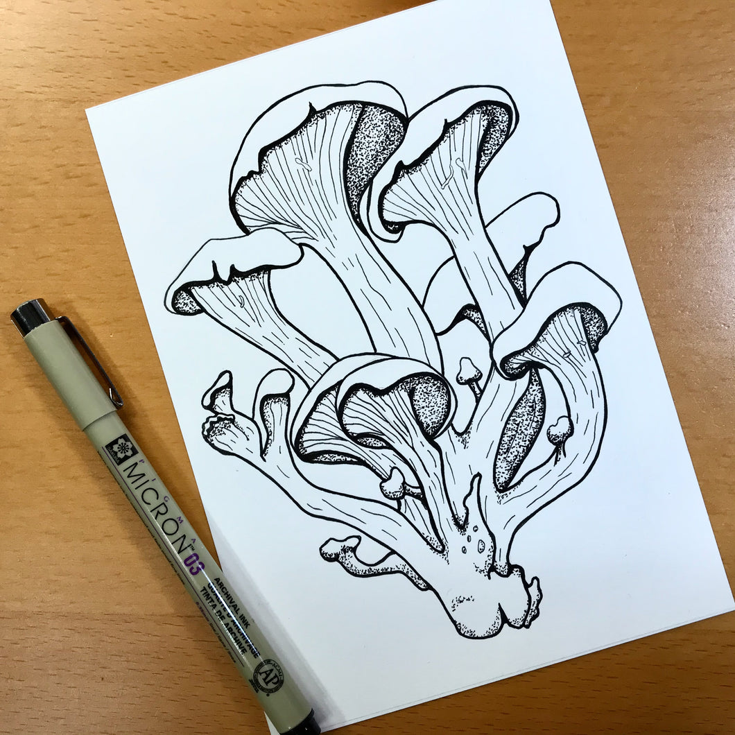 Oyster Mushroom - PNW Fungi Inspired Original Ink Illustration, 5