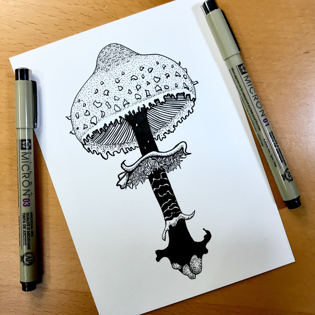 Shaggy Parasol Mushroom - PNW Fungi Inspired Original Ink Illustration, 5