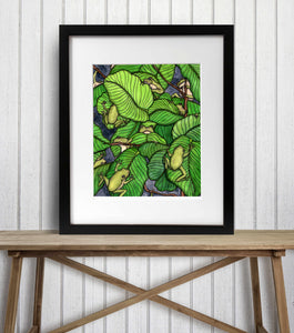 Knot of Frogs - Tree Frog Inspired Watercolor Painting - Art Print