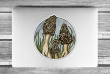 Load image into Gallery viewer, Morel Mushrooms - Fungi Inspired Ink drawing - Giant Vinyl Die Cut Sticker