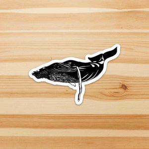 Humpback Whale - Sea Life Inspired Ink Drawing Die Cut Vinyl Sticker