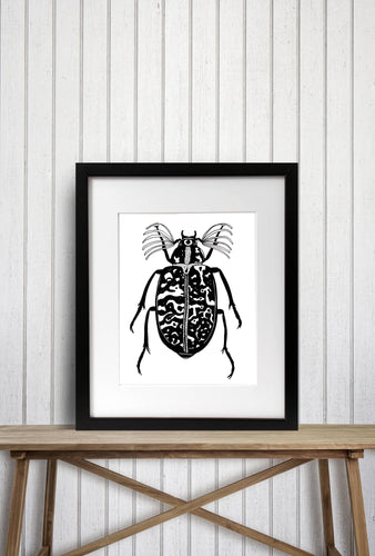 Fuller Beetle Insect Entomology Ink Drawing - Art Print