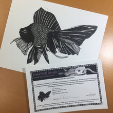 Load image into Gallery viewer, Beauty Fish - Goldfish Inspired Original Ink Illustration