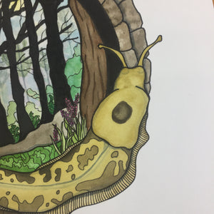 Feeling Sluggish in the PNW - Banana Slug Inspired Original Watercolor & Ink Illustration