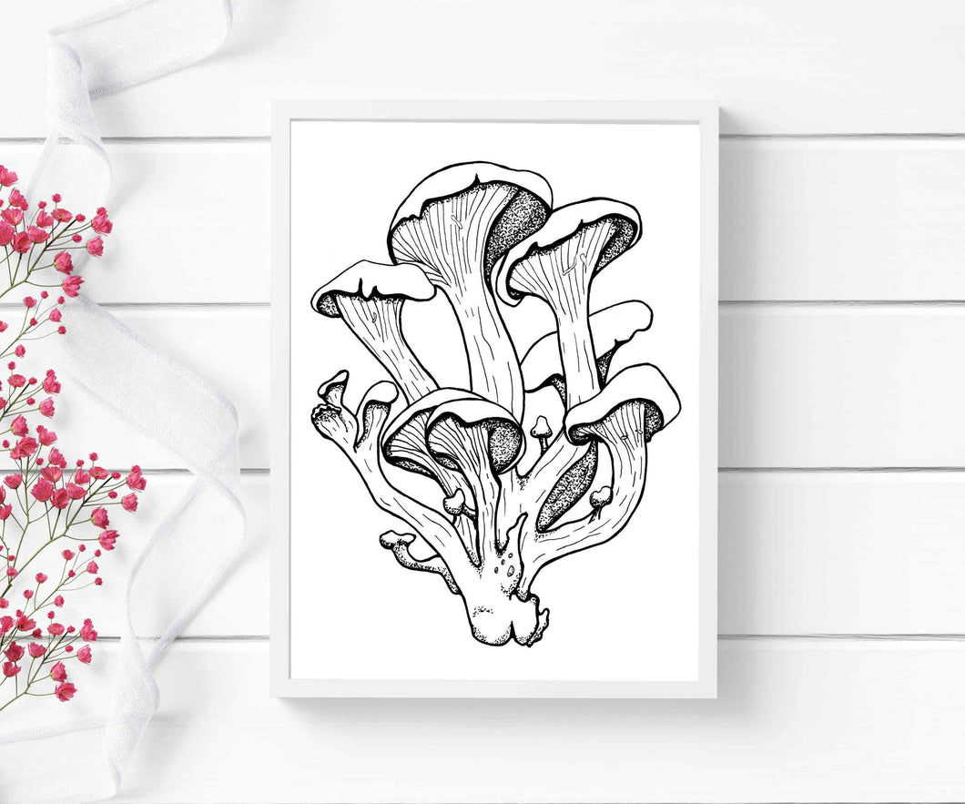 Oyster Mushroom - PNW Fungi Inspired Ink Drawing - Art Print