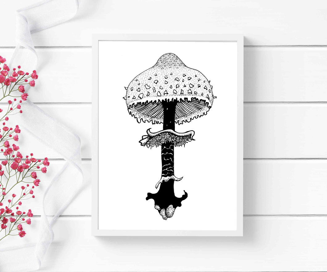 Shaggy Parasol Mushroom - PNW Fungi Inspired Ink Drawing - Art Print