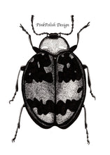 Load image into Gallery viewer, Beetle Bug - Entomology Inspired Ink Drawing - Art Print