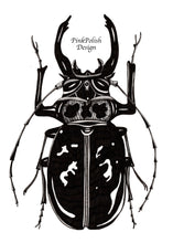 Load image into Gallery viewer, Beetle Jewel - Entomology Inspired Ink Drawing - Art Print