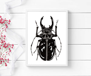 Beetle Jewel - Entomology Inspired Ink Drawing - Art Print