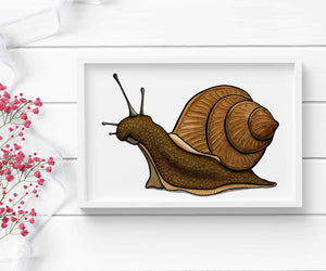 Snail's Pace - PNW Inspired Watercolor Painting - Art Print