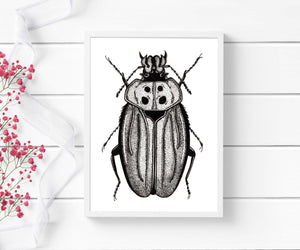 Beetle Distraction - Entomology Inspired Ink Drawing - Art Print