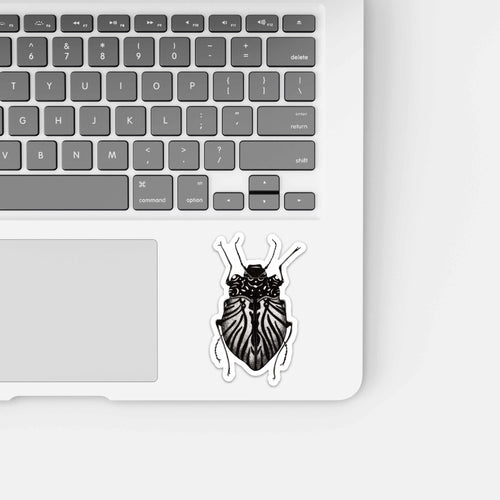 Beetle Inspiration, Insect Inspired Ink Drawing - Vinyl Die Cut Sticker