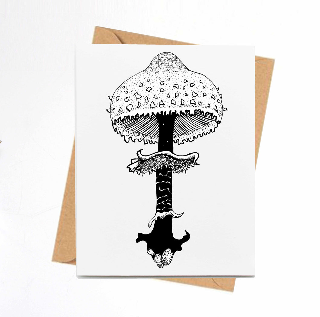 Shaggy Parasol Mushroom - Fungi Inspired Ink Drawing Card - Handmade Note Card