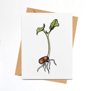 Kidney Bean Sprout, Baby Plant Inspired Watercolor Print - Handmade Note Card