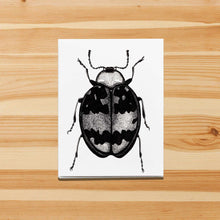 Load image into Gallery viewer, Beetle Bug - Entomology Inspired Handmade Note Card - Note Card