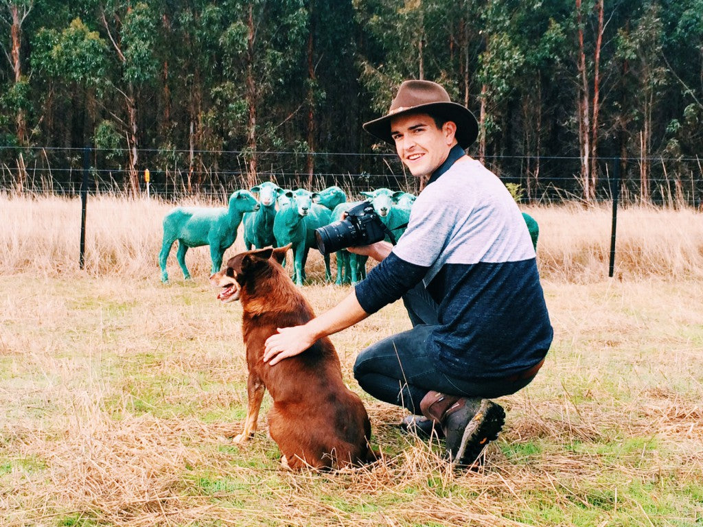 Gray Malin with green sheep in Australia via Simply Framed