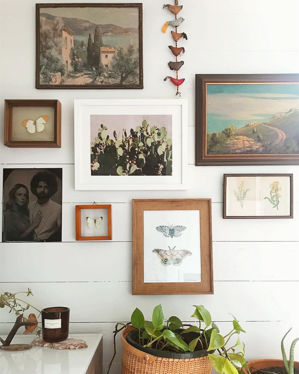 nature gallery wall