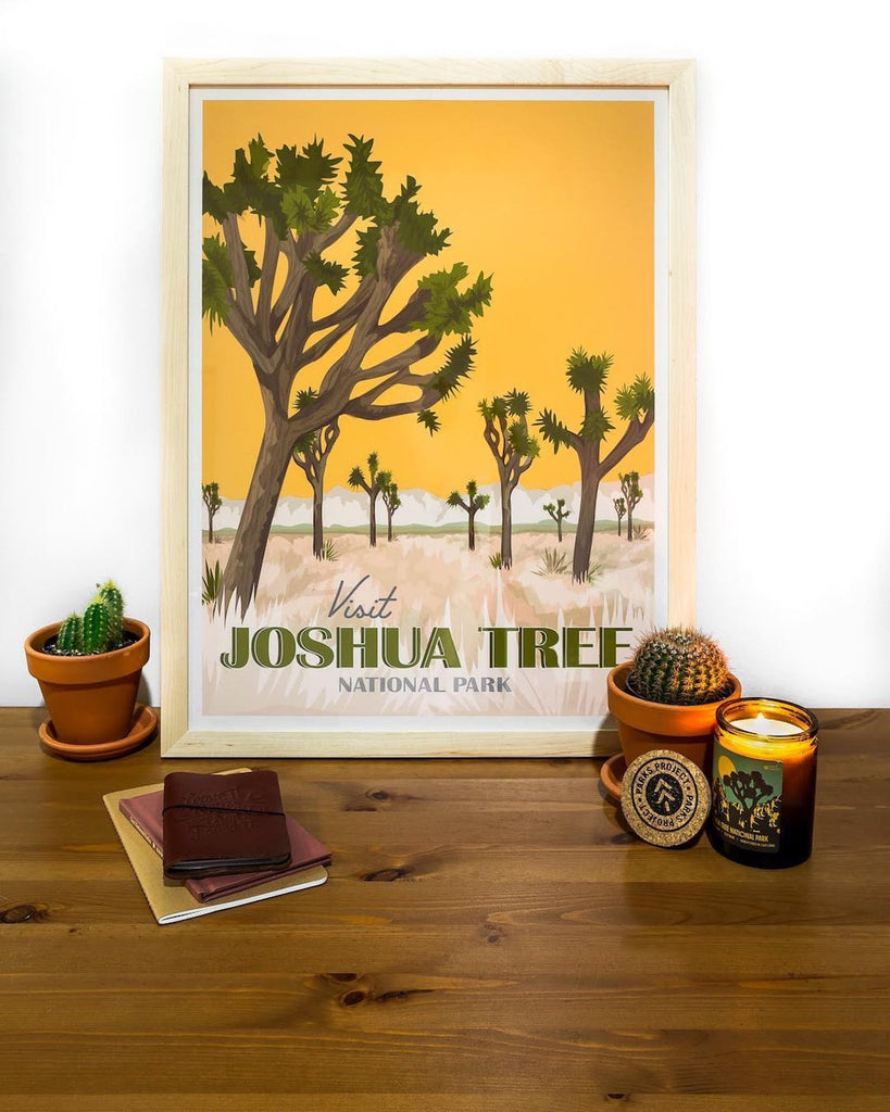 simply framed x parks project Joshua tree