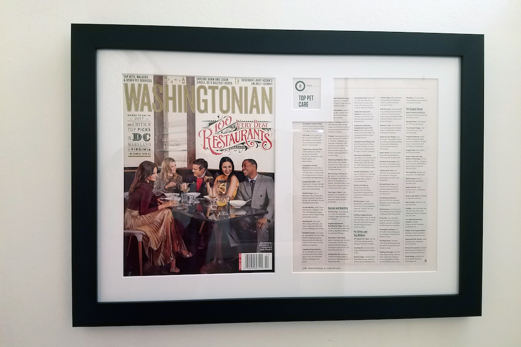 passionately pets in washingtonian custom framed