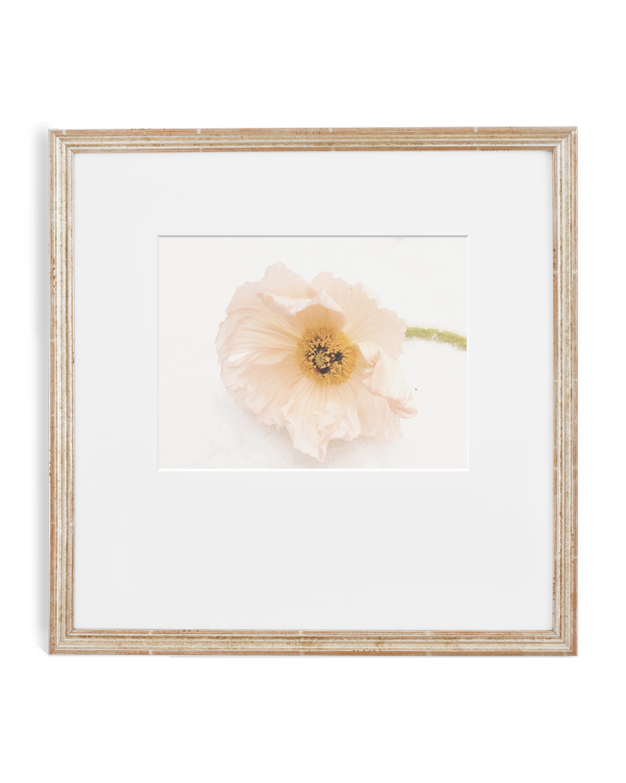 The Best Frames Online | SimplyFramed.com – Simply Framed