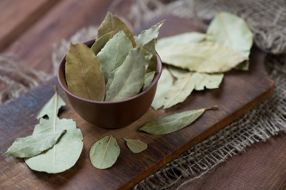 The Magick of Bay Leaves for Wiccan Oils, Incense & Baths