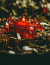 Love Spells for Conjure, Hoodoo, Wiccan and Pagan Rituals that Work!