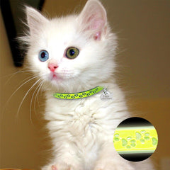 Customized Fluorescence Cat Collar