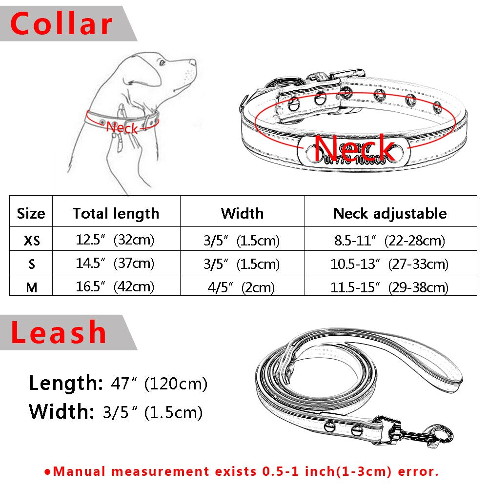 Put My Name On There Collar & Leash Set