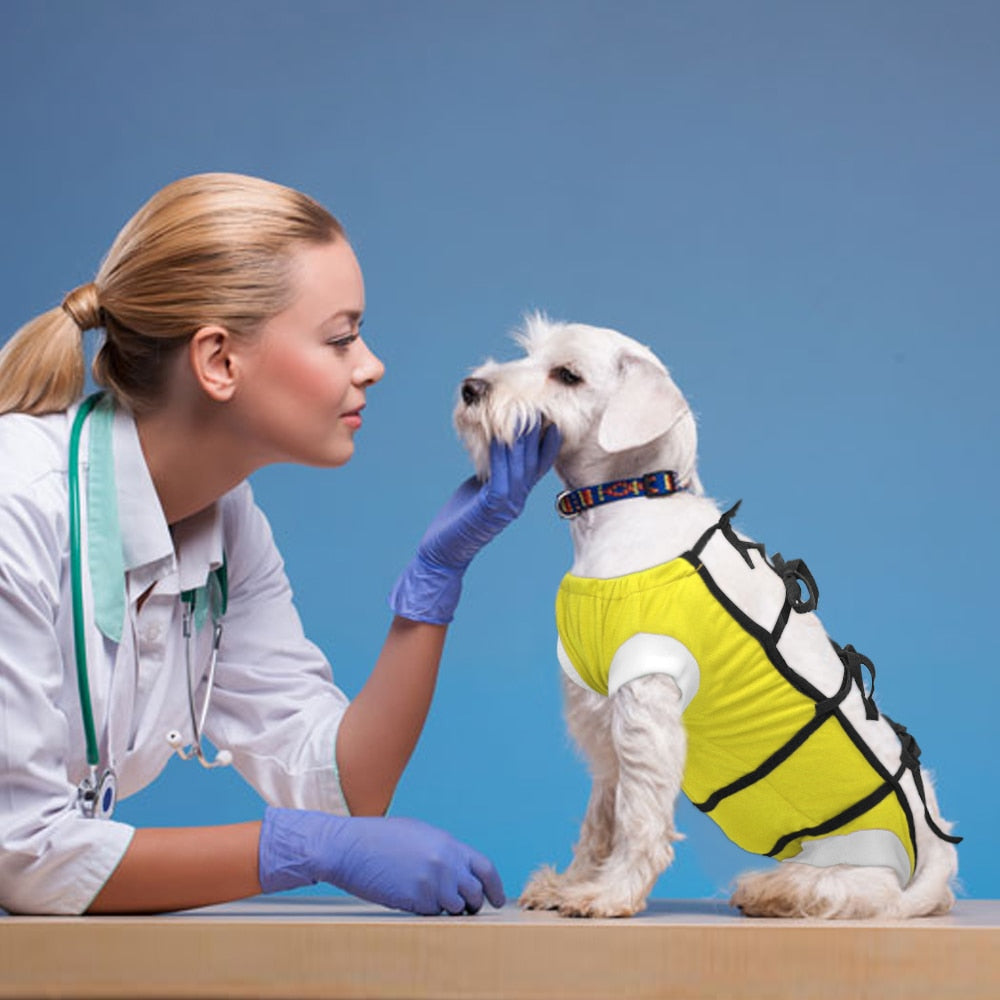 Surgical Clothe For Small Furry Friends