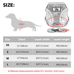 Am Sexy, Am Cute Reflective Dog Vest Harness and Leash Set