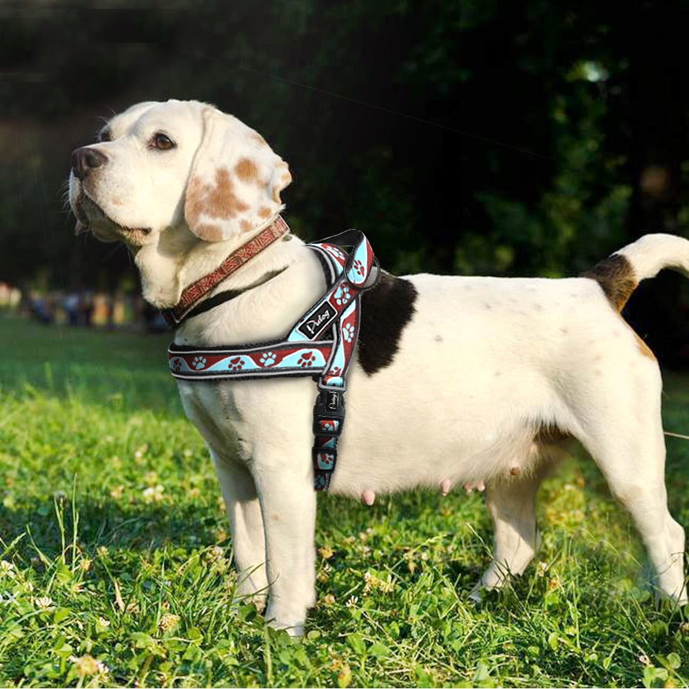 From Another World Reflective Dog Harness