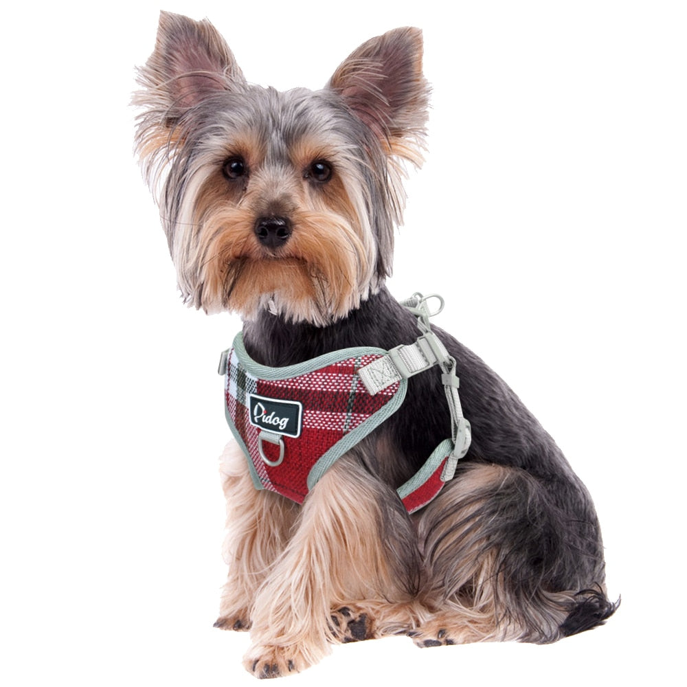 Breathable Mesh Puppy Cat Pet Dog Vest and Leash Set