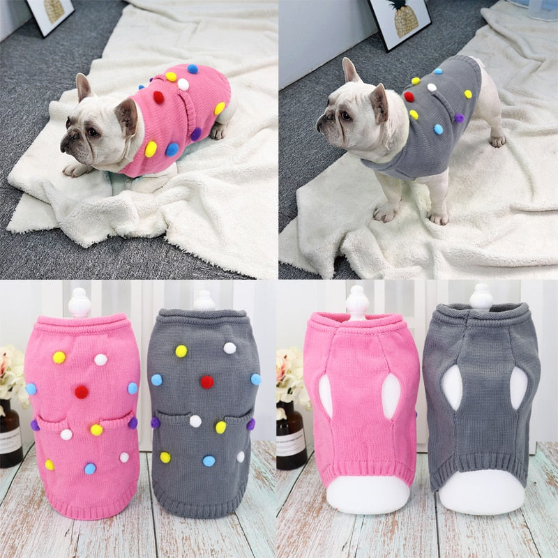 Cute Clothe For The Cute Frenchie